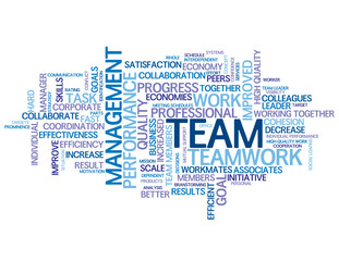 """TEAM"" Tag Cloud (teamwork management goals targets performance)"