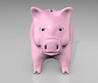 front view of pink piggy