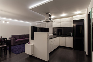 Minimalist apartment - kitchen and living room