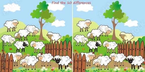 Foto op Canvas Boerderij sheep-find 10 differences