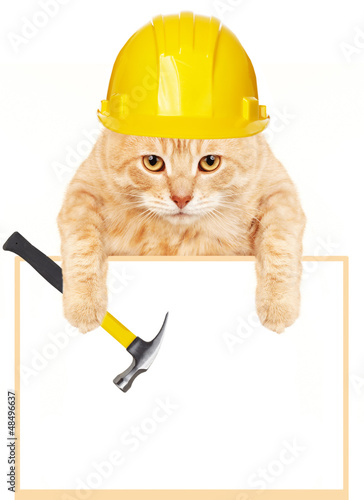 Cat with hammer and banner.