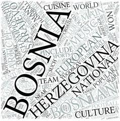 Bosnian literature Disciplines Concept