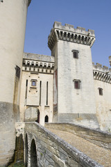 Entrance to the Tarascone castle in France