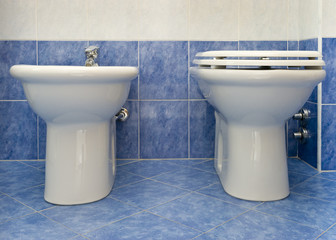 the water-closet and bidet