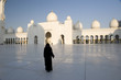 Mosque of Abu Dhabi