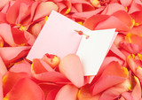 Open card on petals of roses