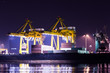 crane working with container cargo in shipyard at dusk