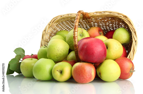 juicy apples with green leaves in basket, isolated on white