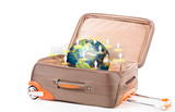 Suitcase and earth isolated on a white background  (Elements of
