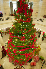 Capitol Rotunda Christmas Tree
