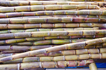 fresh sugarcane in Delhi bazaar, India