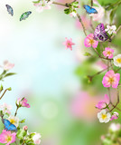 Fototapety Background nature