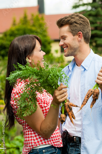 Gardening in summer - couple harvesting carrots