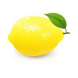 Yellow Lemon With Leaf