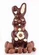 easter bunny and chocolate egg
