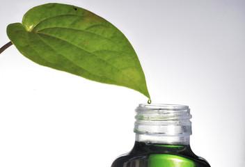 herb medicine