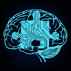 human brain as a central processing unit