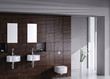 Exclusive Luxury Bathroom Interior