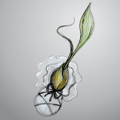 Baby flower / Surreal vector sketch
