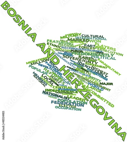 Word cloud for Bosnia and Herzegovina