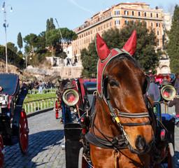 carrozzella romana