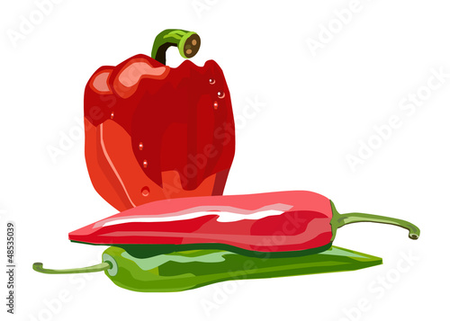 vector isolated red and green peppers