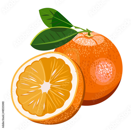 vector juicy bright orange