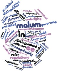 Word cloud for Malum in se