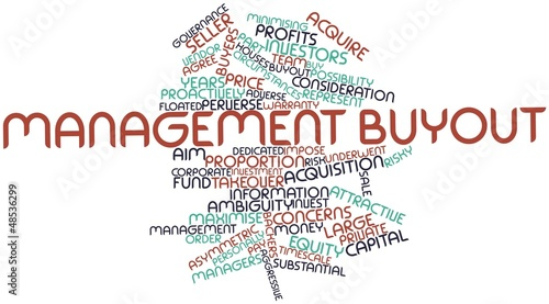 Word cloud for Management buyout