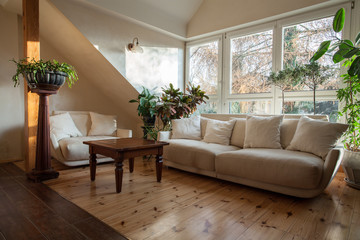 Cloudy home - bright attic with huge sofa and plants