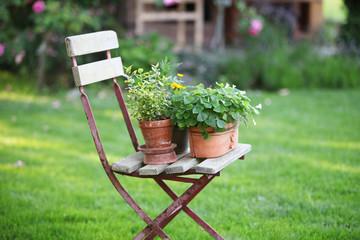 Sessel im Garten und Wiese