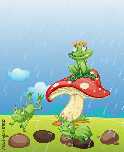 Fotobehang Magische wereld Frogs playing in the rain
