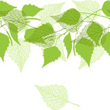 Fototapety Seamless pattern with green birch leaves.