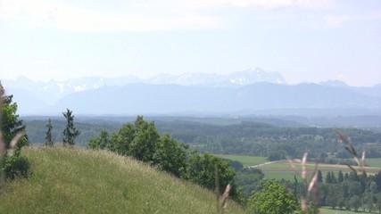 Alpine Upland