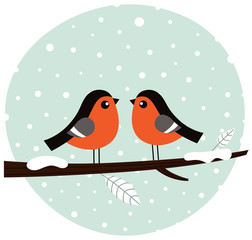 Cute bullfinch couple sitting on the branch