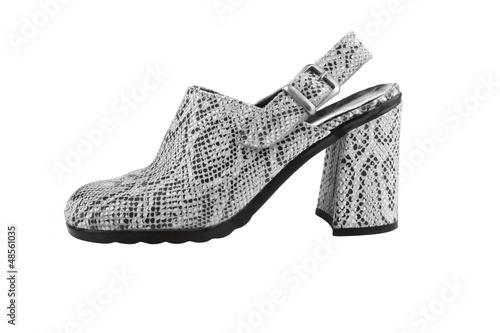 Snake leather women shoe, isolated on white