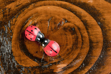 Wooden ladybugs toys on painted wooden texture