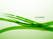 Green lines vector abstract background template