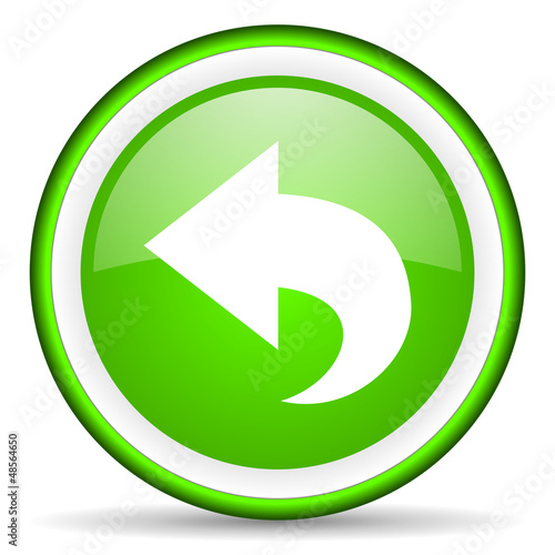 back green glossy icon on white background