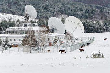 Satellite and horses