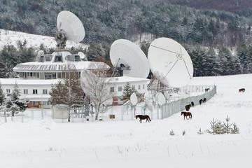 Satellite and horses