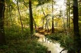Fototapety Landschaft 230