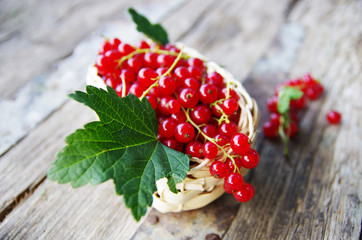 Red currant in basket on rustical table