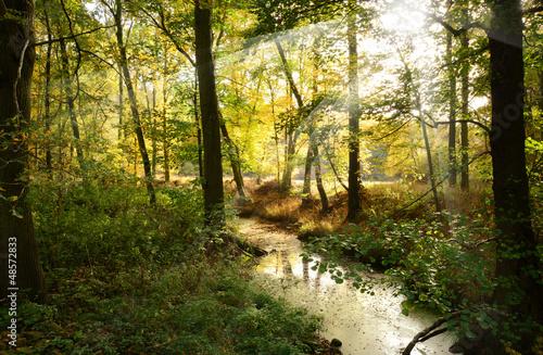 canvas print picture Landschaft 230