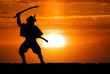 Samurai on sunset
