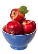 Ripe red apples in a blue bowl