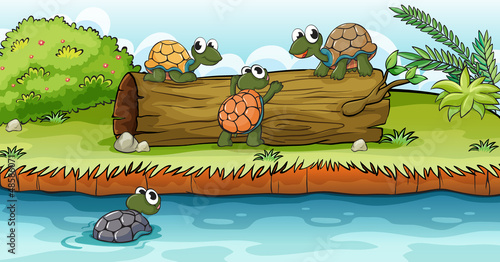 Turtles on a dry wood