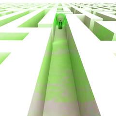 green bulb ecology inside labyrinth walls
