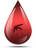 Dengue disease - drop of blood with a mosquito poster