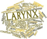 Word cloud for Larynx